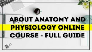 About Anatomy and Physiology Online Course - Full Guide