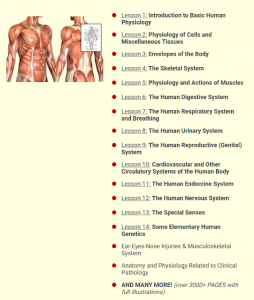 human physiology online course