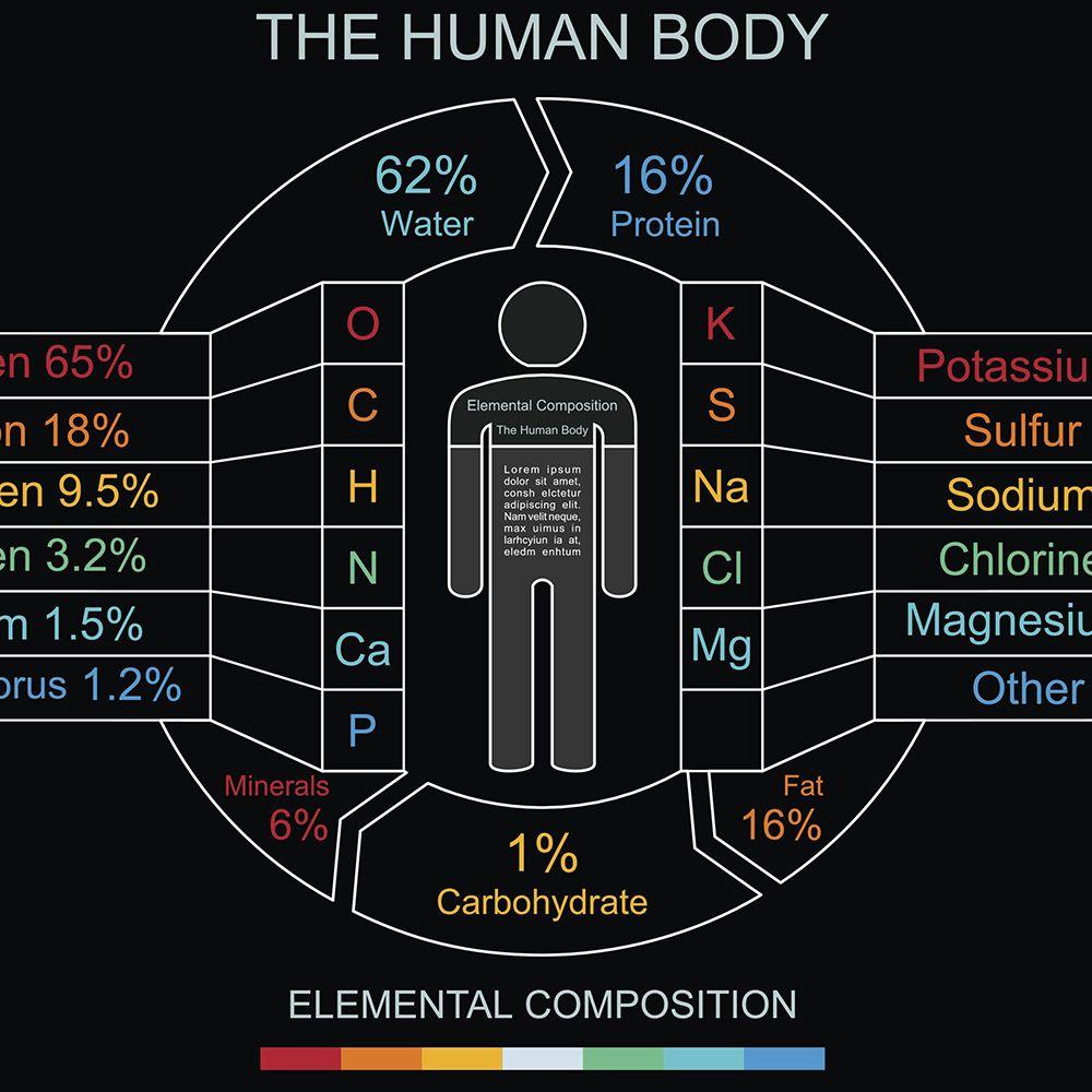 human body chemistry